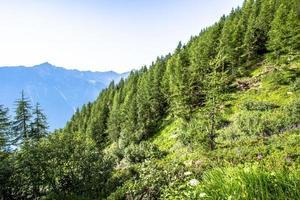 paysage alpin photo
