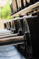 poids barbelés dans la salle de gym