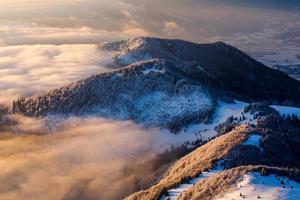 inversion matinale paysage d'hiver