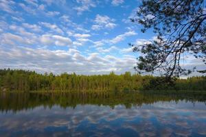 paysage sur le lac de la forêt photo