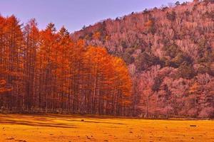 ranch automne photo