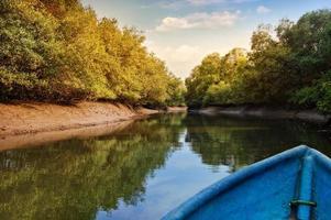 Kayak dans les tunnels de mangrove, sanctuaire d'oiseaux de Salim Ali, Goa, Inde photo