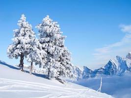 hiver dans les alpes