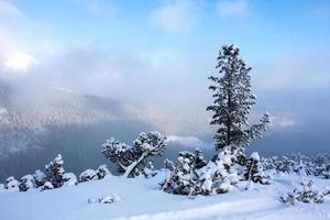 scène d'hiver dans les montagnes photo