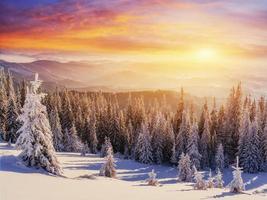 coucher de soleil dans les montagnes d'hiver photo