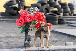 Ukraine. Kiev, place de l'indépendance. maidan. photo