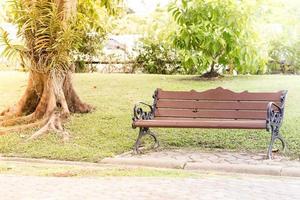banc dans l'allée du parc photo