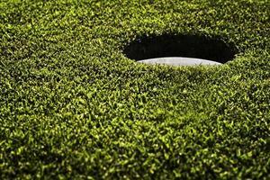 parcours de golf photo