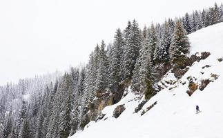 planche a neige photo