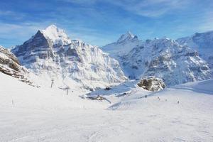 grindelwald, suisse photo