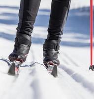 ski de fond photo