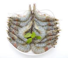 crevettes crues sur fond blanc photo