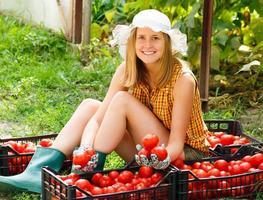 tri des tomates photo