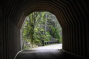 tunnel oneonta photo