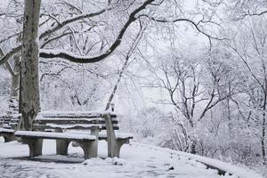scène d'hiver à new york city