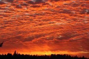 coucher de soleil orange photo