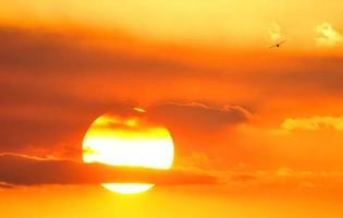 vol au coucher du soleil photo