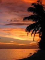 îles Cook au coucher du soleil photo