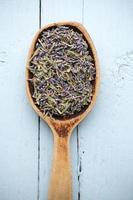 La médecine homéopathique. photo
