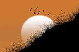 coucher de soleil fond silhouettes herbe. photo