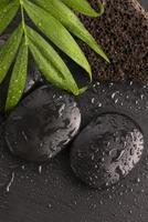 feuille verte sur la pierre du spa sur une surface noire humide photo