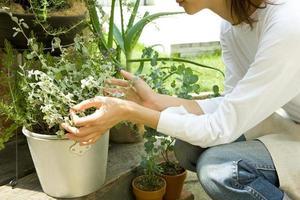 femme, jardinage, herbe photo
