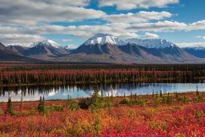 couleurs de la nature photo
