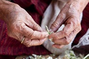 mains de grand-mère photo