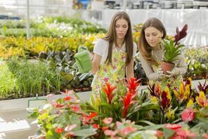 jeunes femmes dans le jardin fleuri