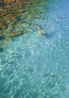 plongée en apnée tropicale