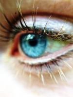 oeil bleu de près photo