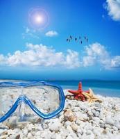 masque de plongée et étoile de mer sous un troupeau de flamants roses photo