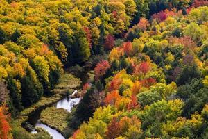 tombe des couleurs à la rivière carpe, parc d'état des montagnes porc-épic photo