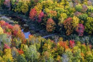 tombe des couleurs à la rivière carpe, parc d'état des montagnes porc-épic