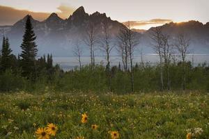 coucher de soleil sur les grands tetons de l'ombre de la montagne photo