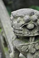 statue de lion chinois photo