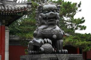 lion du palais d'été photo