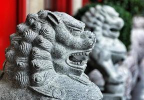lions du quartier chinois photo