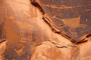 pétroglyphe d'antilope photo