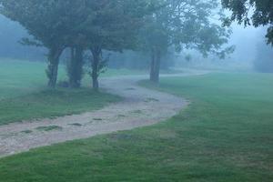 serpentant chemin brumeux photo