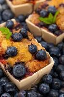 mini gâteaux aux bleuets photo