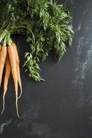 carottes biologiques sur fond noir photo