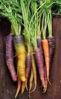 carottes arc-en-ciel biologiques fraîches