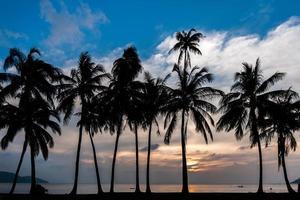 coucher de soleil sur l'île de samui photo