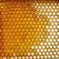 motif en nid d'abeille photo