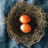 œufs de Pâques teints de façon traditionnelle dans un nid d'oiseau photo