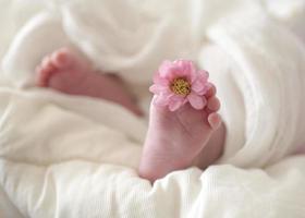 pieds de bébé photo