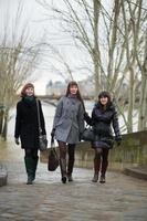 touristes à paris photo