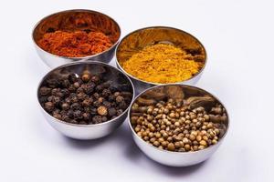 curry, poivre, paprika et coriandre - fond blanc.