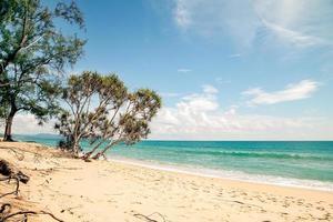 plage tropicale